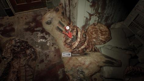 Resident Evil 7 Teaser: Beginning Hour_20161205234225